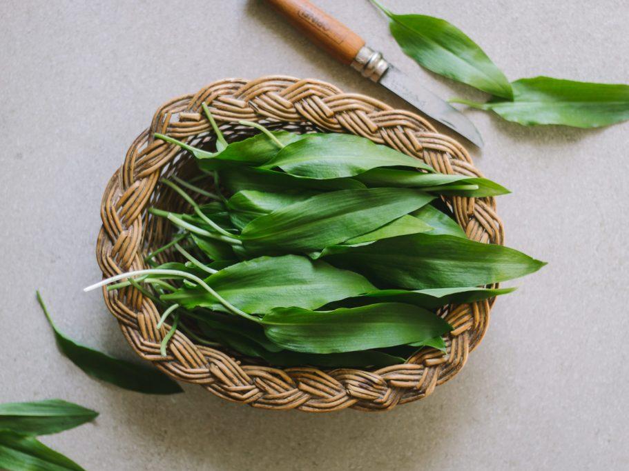 Picked Wild Garlic